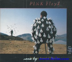 Pink Floyd, Delicate Sound of Thunder, EMI, CDS 7 91480 2