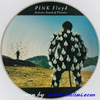 Pink Floyd, Delicate Sound of Thunder, Columbia, 928.010